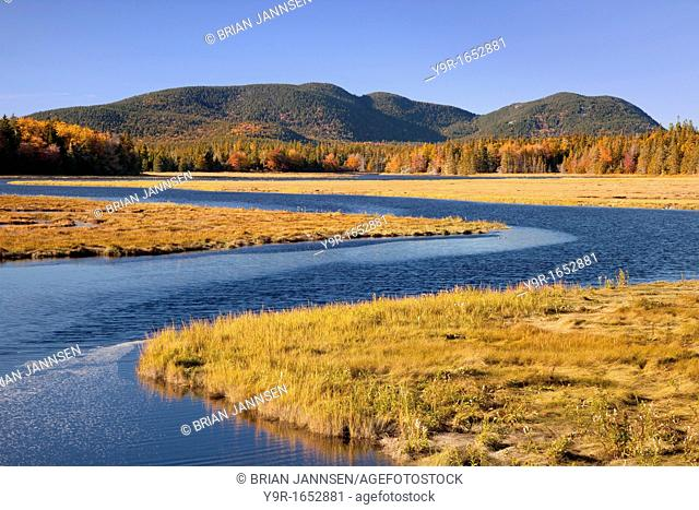 Bass Harbor Marsh in autumn, Bass Harbor Maine USA