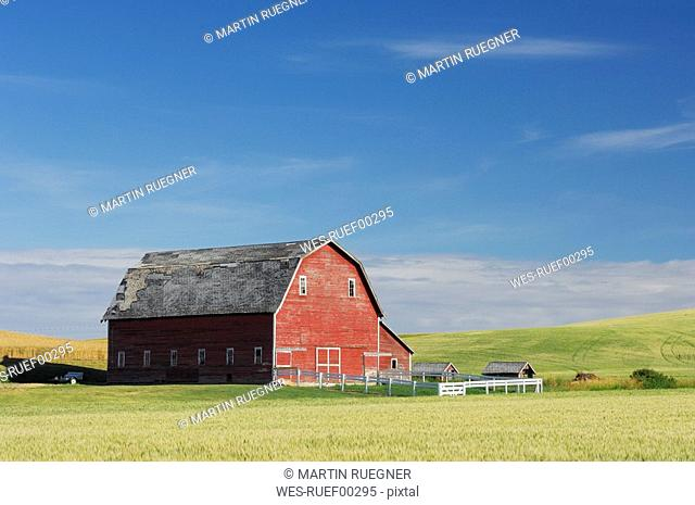 USA, Palouse, Whitman County, Washington State, Barn in field
