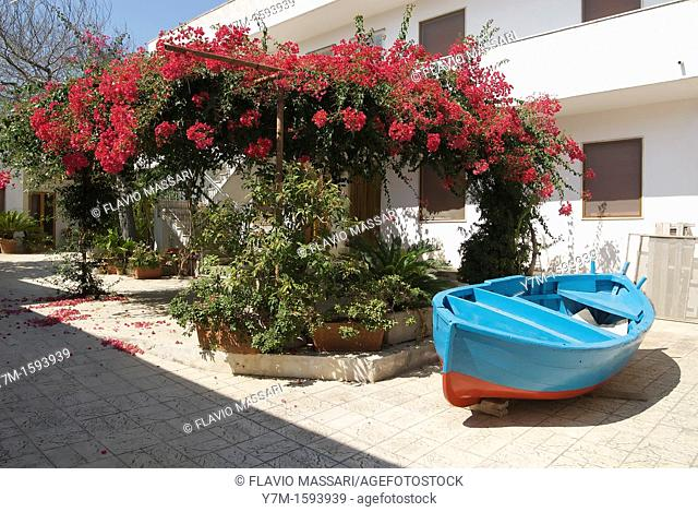 Otranto Italy: boat under a bougainvillea at fisherman house