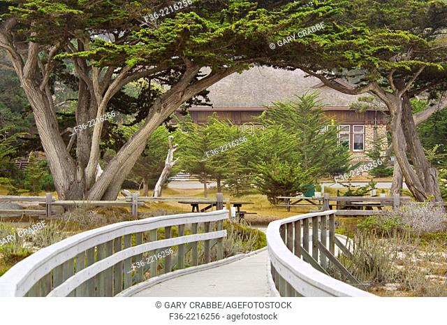 Boardwalk pathway at Asilomar Conference Center, Pacific Grove, Monterey Peninsula, California