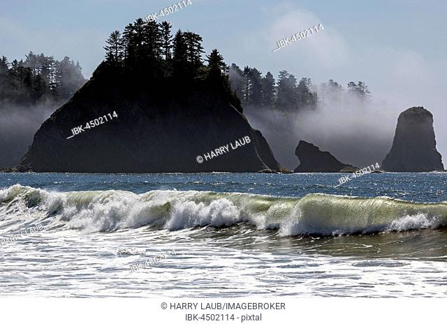 Rialto Beach at La Push, Forks, Olympic National Park, Washington, USA
