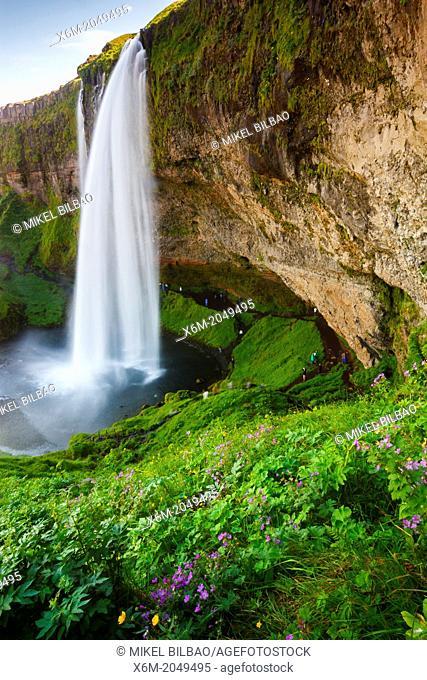 Seljalandsfoss waterfall. Iceland, Europe