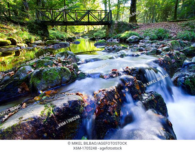Watercourse  Saja-Besaya Natural Park  Cantabria, Spain