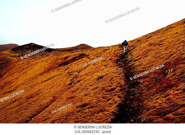Tourist hiking up hill, Reykjavík, Gullbringusysla, Iceland
