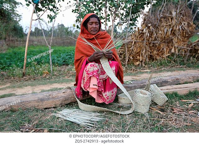 Tribal woman making mat, KHAIRWAR TRIBE, Chiniya village, Dist Balrampur, Chattisgarh, India