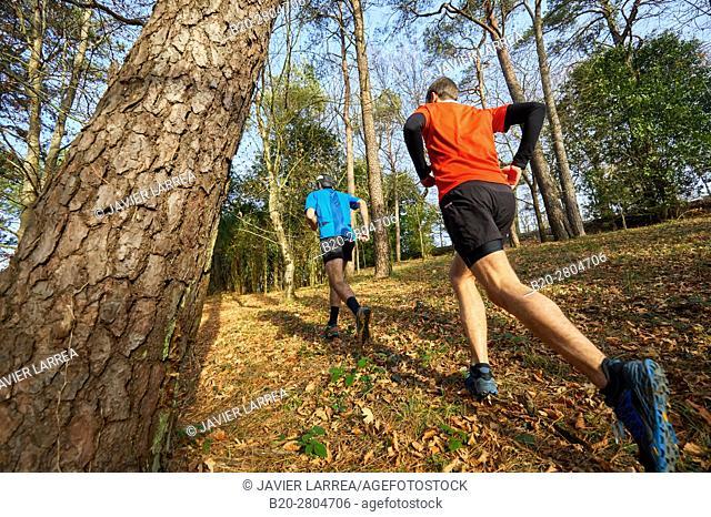 Trial, Running in the forest, Mount Ulia, Donostia, San Sebastian, Gipuzkoa, Basque Country, Spain, Europe