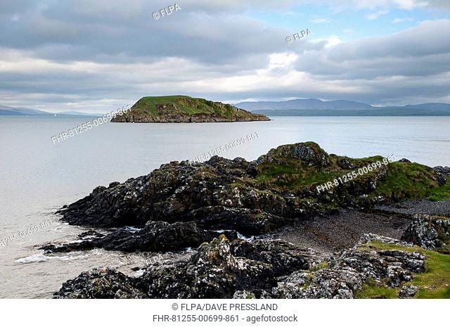 View of rocky coastline and island, Maiden Island, Oban Bay, Inner Hebrides, Argyll, Scotland, May