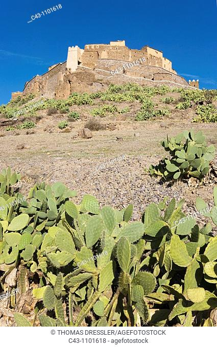 Morocco - The spectacularly sited agadir = fortified granary of Tizourgane in the Anti-Atlas mountains in southwest Morocco  The slopes are grown with prickly...