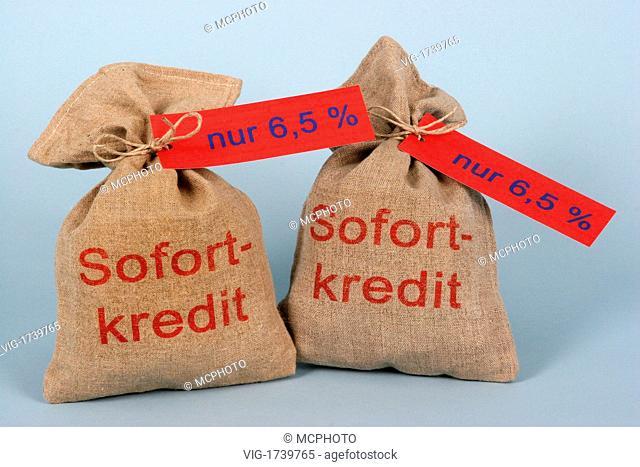 Credit money bag - 01/01/2009