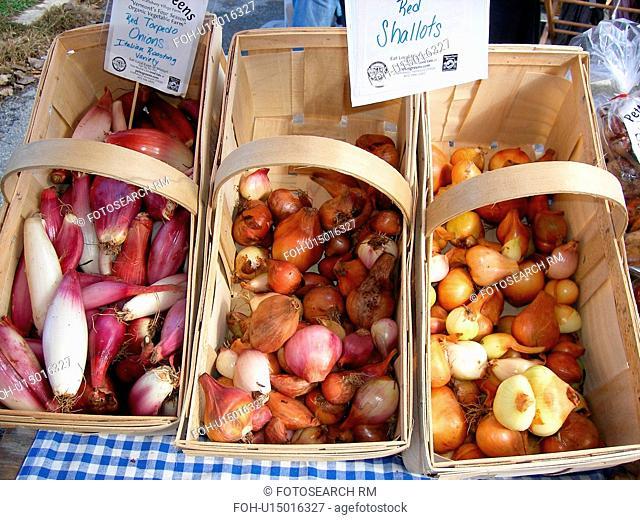 onions, shallots, Saturday Farmers Market, Montpelier, VT, Vermont