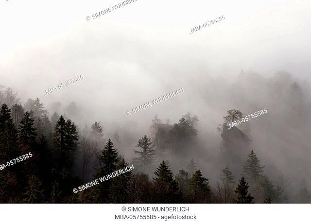 Autumn fog in the alps