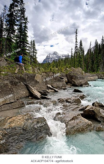 A photographer hikes beside The Kicking Horse River with Cathedral Mountain in the back, Yoho National Park, Rocky Mountain Region, British Columbia, Canada