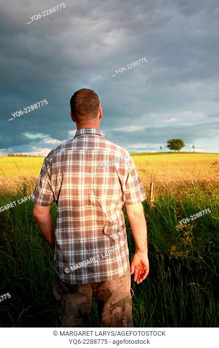 A man standing at the summer fields with his back to the viewer. and looking at the horizon