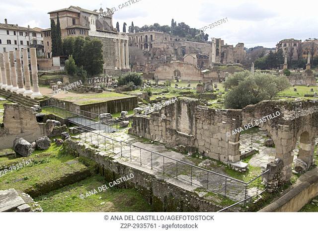 Roman forum in Rome Italy on February 8, 2017