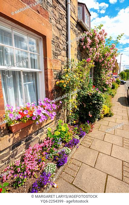 Beautiful flowers decorating old houses in the streets of a small Scottish village, Broughton