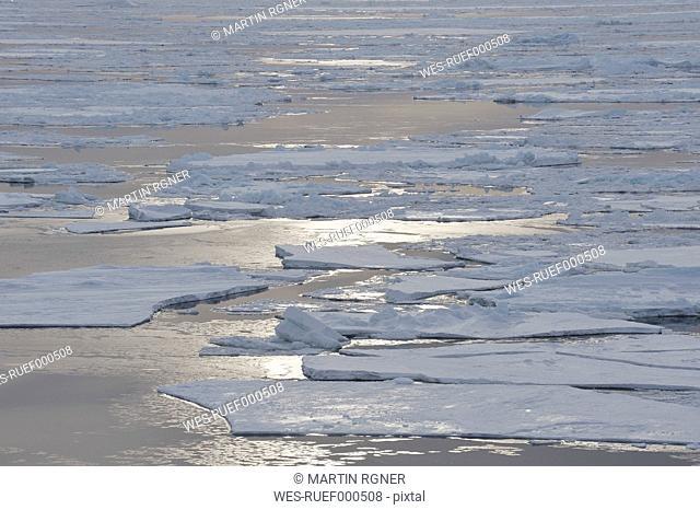 Antarctic, Antarctic Peninsula, Weddell Sea, View of icefloe