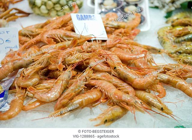 fish market, Barcelona, Spain - Barcelona, Spain, 17/04/2009