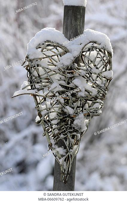 heart plaited with twigs, snow covered, close-up