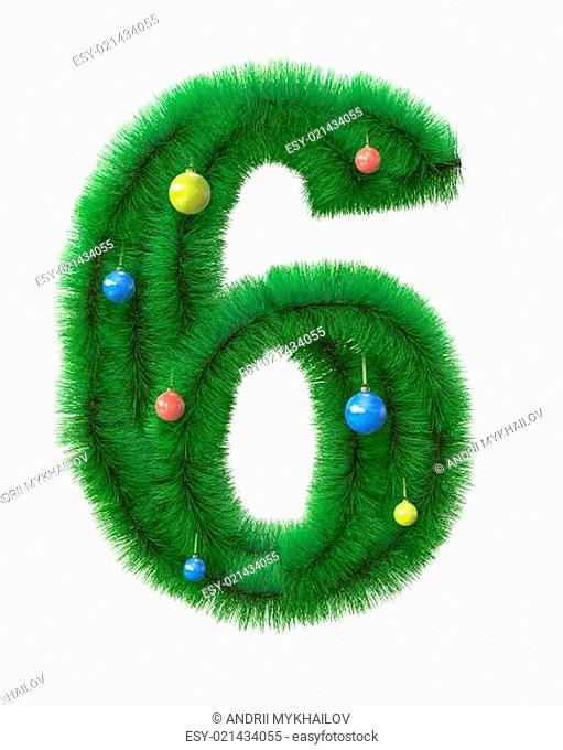 6 number made of christmas tree branches