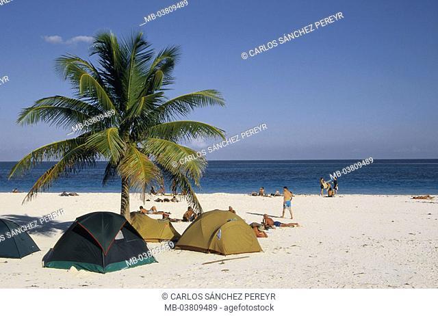Mexico, peninsula Yucatan, Quintana Roo,  Tulum, beach, palm, tents,  Central America, Latin America, destination, sandy beach, Maya Riviera, sea, horizon