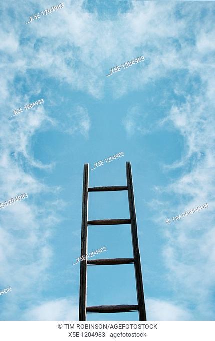 Ladder ascending into blue sky