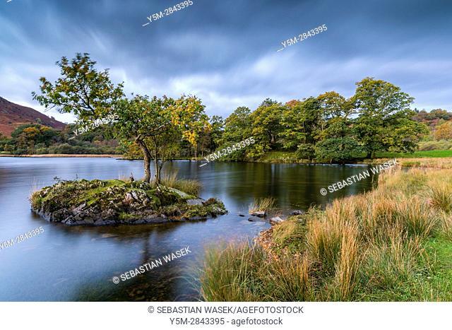 Rydal Water, Lake District National Park, Cumbria, England, United Kingdom, Europe