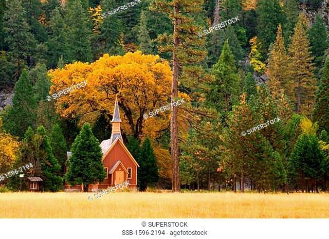 Yosemite Chapel, Yosemite National Park, CA, USA