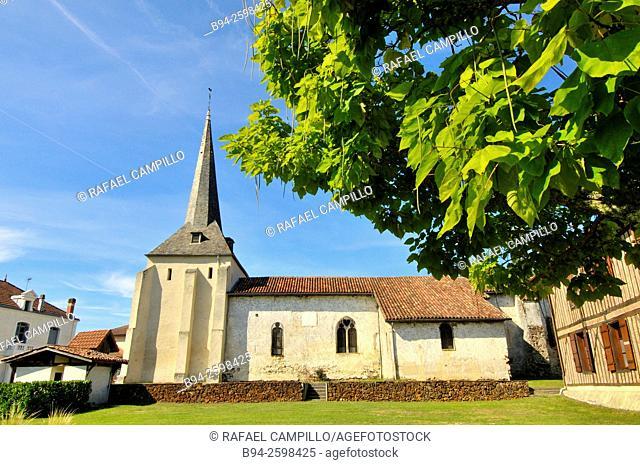 Fortified church of Saint Martin du Vignac en Born, Lévignacq, Landes department, Aquitaine region, South Western France