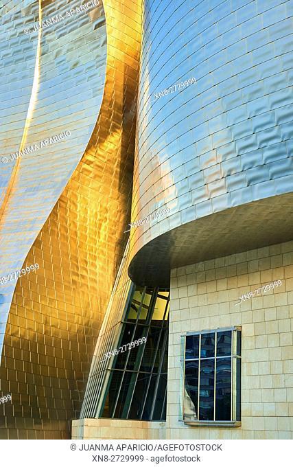 Detail of the Guggenheim Museum, Bilbao, Biscay, Basque Country, Euskadi, Spain, Europe