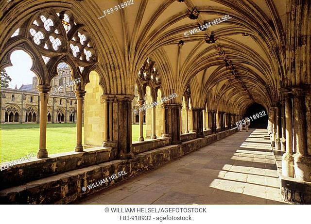UK, England, Norfolk, Norwich Cathedral, cloister with vaulted ceiling overlooking cloister lawn or 'garth',built primarily 1096-1145