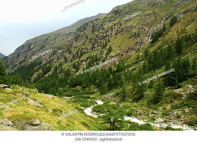 Landscape near of Pont with the Savara stream, in the Valsavarenche valley. National park Gran Paradiso. Italy
