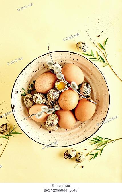 Still life of fresh spring eggs in a bowl