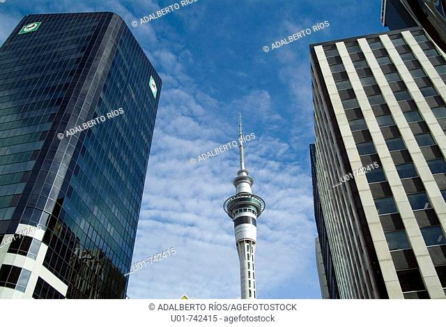 Auckland Skycrapers and the Sky Tower behind