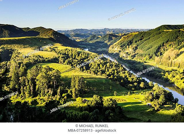 Overlook over the Whanganui river in the lsuh gree countryside, Whanganui river road, North Island, New Zealand