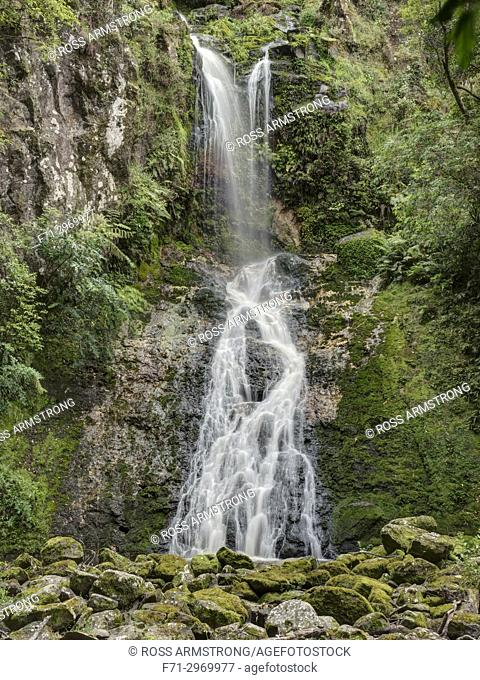 Paranui Falls, also known as Pukenui Falls, is located at A. H. Reed Memorial Park, Whangarei. Northland, New Zealand