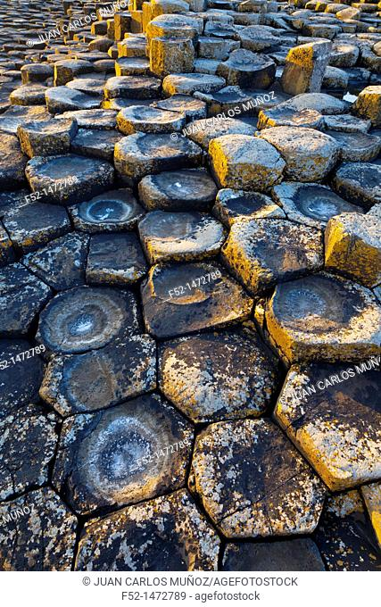 The Giant's Causeway  World Heritage Site  Antrim County, Northern Ireland, Europe