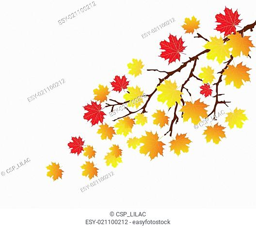 branch with fall leaves