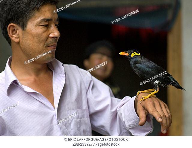 Man Holding A Mynah Bird, Keriya, Old Town, Xinjiang Uyghur Autonomous Region, China