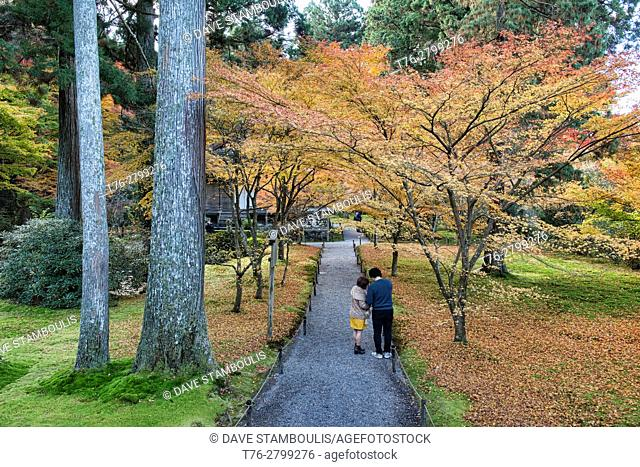 Autumn leaves at Sanzen-in temple, O'hara, Kyoto Prefecture, Japan