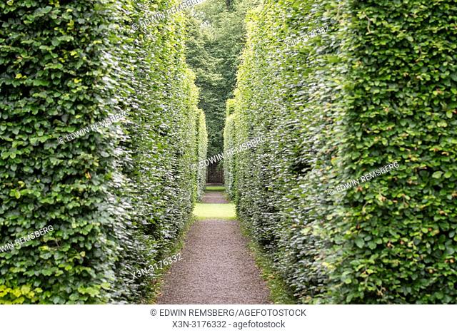 Symmetric pathway among the trees, Levens Hall , Kendal, Cumbria , UK