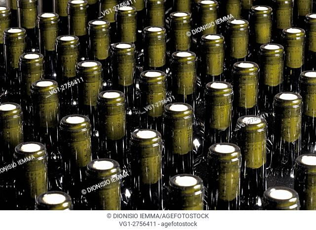 Cantina La Pizzuta Del Principe, red DOC wine bottles, Strongoli, Calabria, Italy, Europe