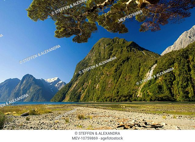 Milford Sound - with waterfalls and surrounding mountains. Milford Sound is one of the, if not THE, most famous attraction in New Zealand