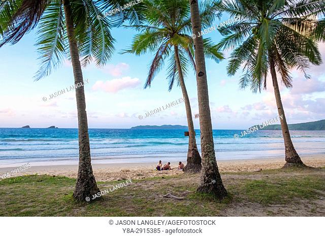 Palm trees on Nacpan Beach at sunset, El Nido, Palawan, Philippines