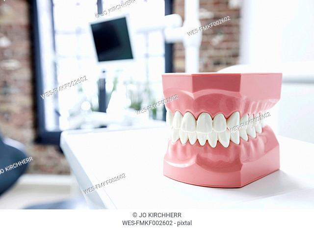 Tooth model in dental surgery