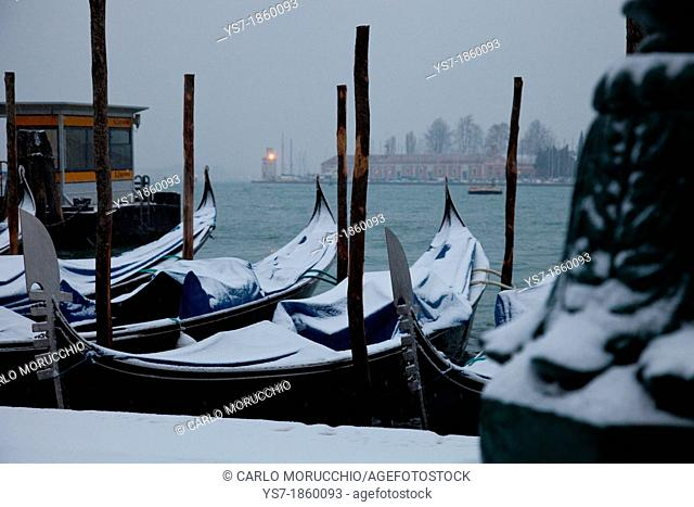 Moored gondolas covered with snow, St  Mark's basin, Venice, Italy, Europe
