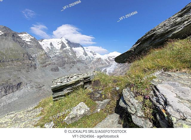 The Grossglockner summit as seen from Kaiser Franz Josefs Höhe, High Tauern National Park, Carinthia, Austria