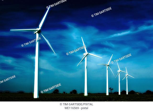 wind powered turbines in field,norfolk,england,uk,europe