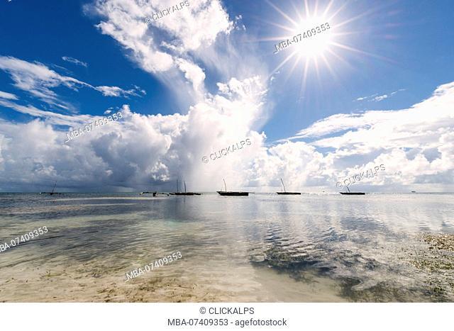 East Africa, Tanzania, Zanzibar, sunny summer day on Kiwengwa beach