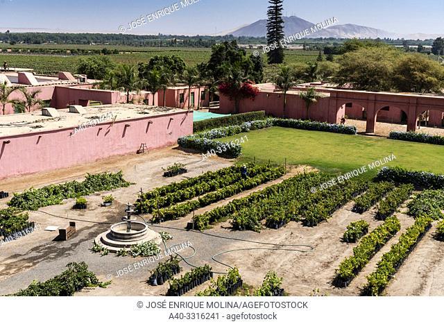 Tacama wine cellar, the oldest winery in America, Ica, Peru