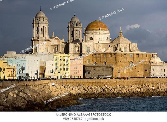 Barrio de la Viña. Seafront, historic center and cathedral of Santa Cruz. Cadiz City, Andalusia Spain. Europe
